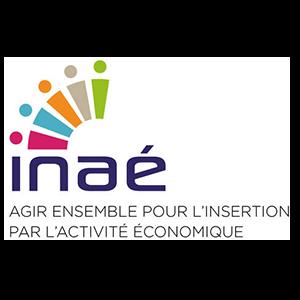 logo inae
